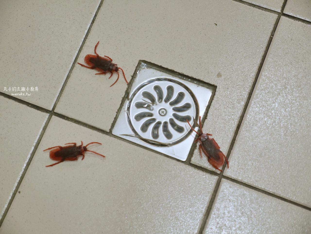 【廚房清潔】免警蟑 十個廚房清潔妙招分享 免螞煩 只要這樣做蟑螂螞蟻通通退散 @Maruko與美食有個約會