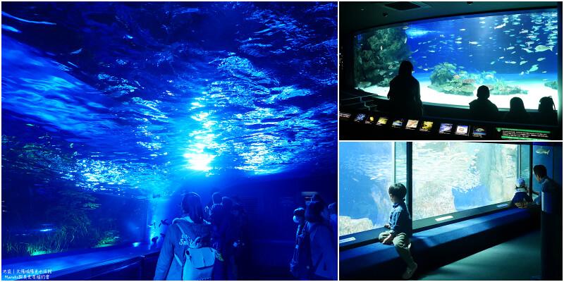 【東京池袋】太陽城陽光水族館|在城市高樓中離天空最近的海上樂園 @Maruko與美食有個約會