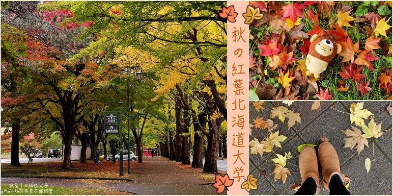 【札幌賞楓景點】北海道大學|秋天的紅葉札幌楓葉轉紅與銀杏轉黃的季節 @Maruko與美食有個約會