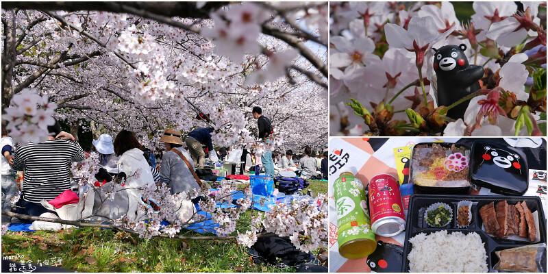 【福岡賞櫻 】舞鶴公園|櫻花樹下享受野餐的美好時光 @Maruko與美食有個約會